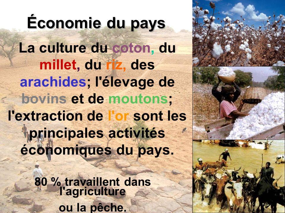 Économie du pays La culture du coton, du millet, du riz, des arachides; l'élevage de bovins et de moutons; l'extraction de l'or sont les principales a