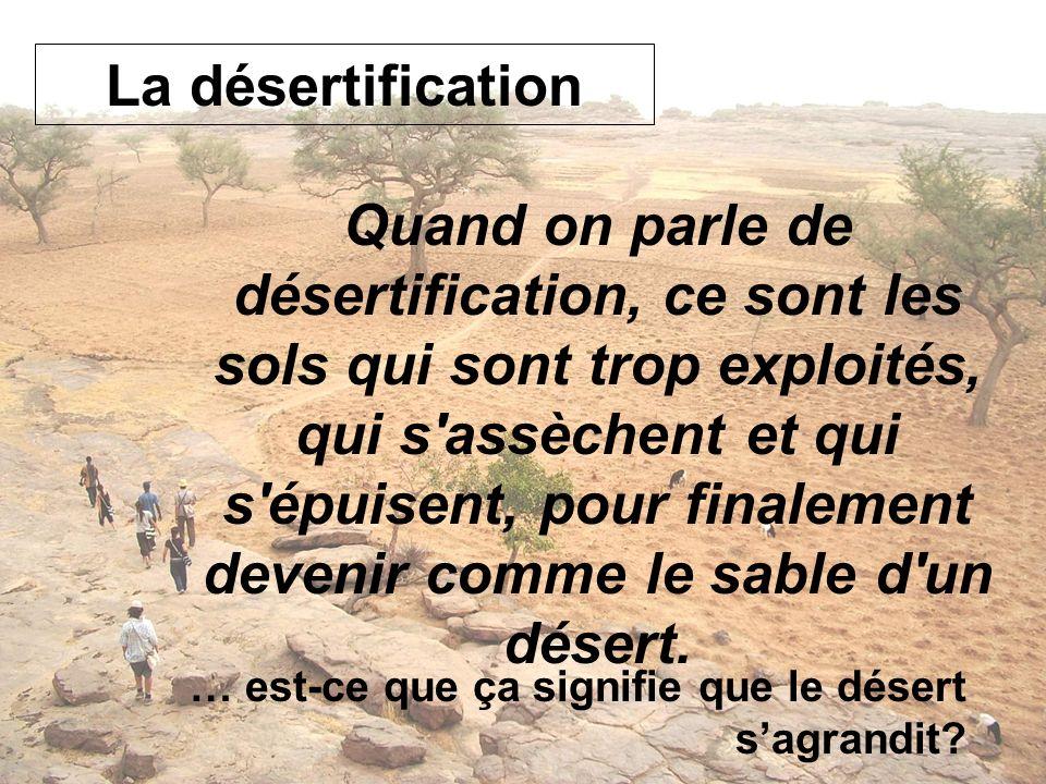 La désertification Quand on parle de désertification, ce sont les sols qui sont trop exploités, qui s'assèchent et qui s'épuisent, pour finalement dev