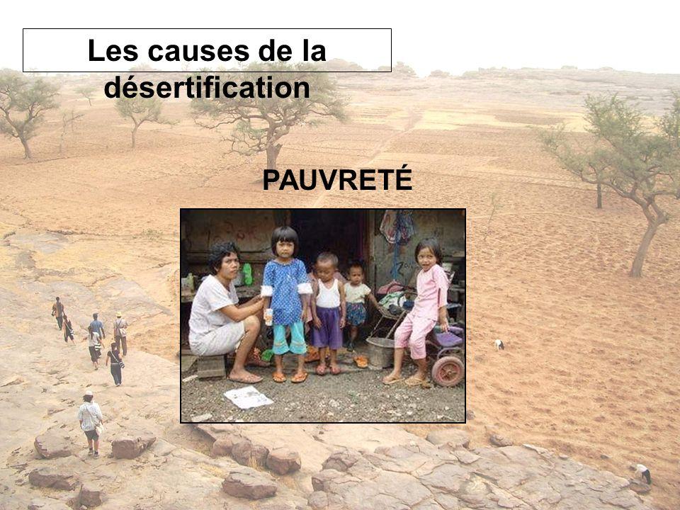 PAUVRETÉ Les causes de la désertification
