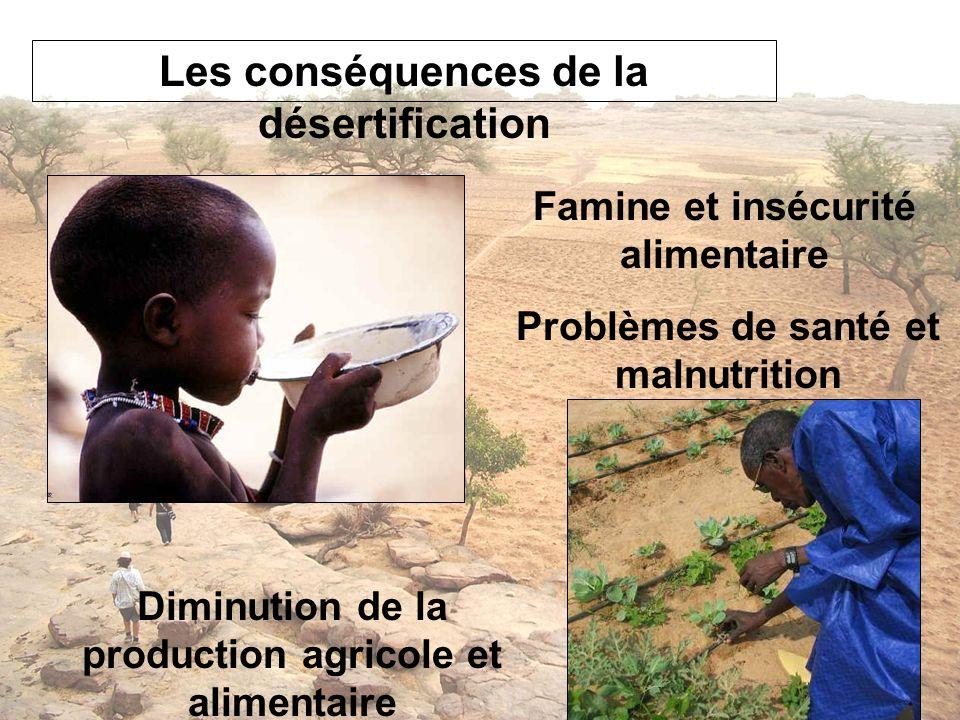 Famine et insécurité alimentaire Diminution de la production agricole et alimentaire Problèmes de santé et malnutrition
