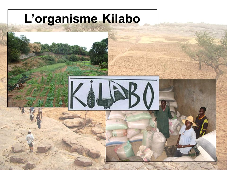 Lorganisme Kilabo