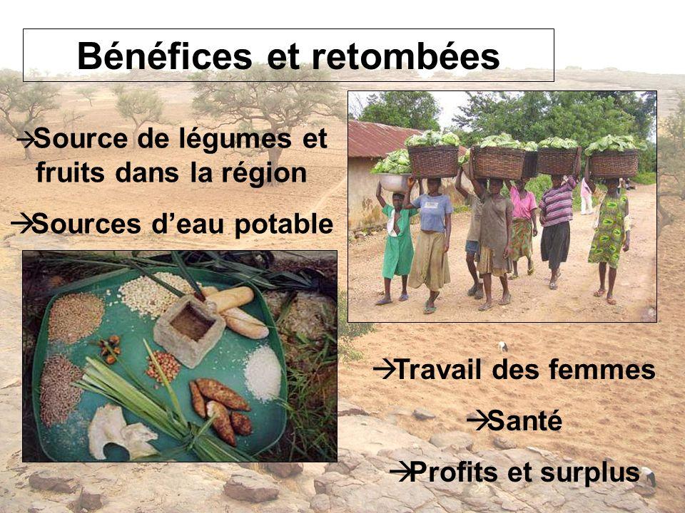 Bénéfices et retombées Source de légumes et fruits dans la région Sources deau potable Travail des femmes Santé Profits et surplus