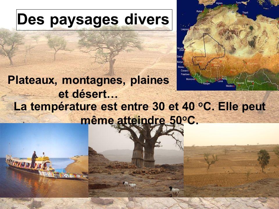 Des paysages divers Plateaux, montagnes, plaines et désert… La température est entre 30 et 40 o C. Elle peut même atteindre 50 o C.