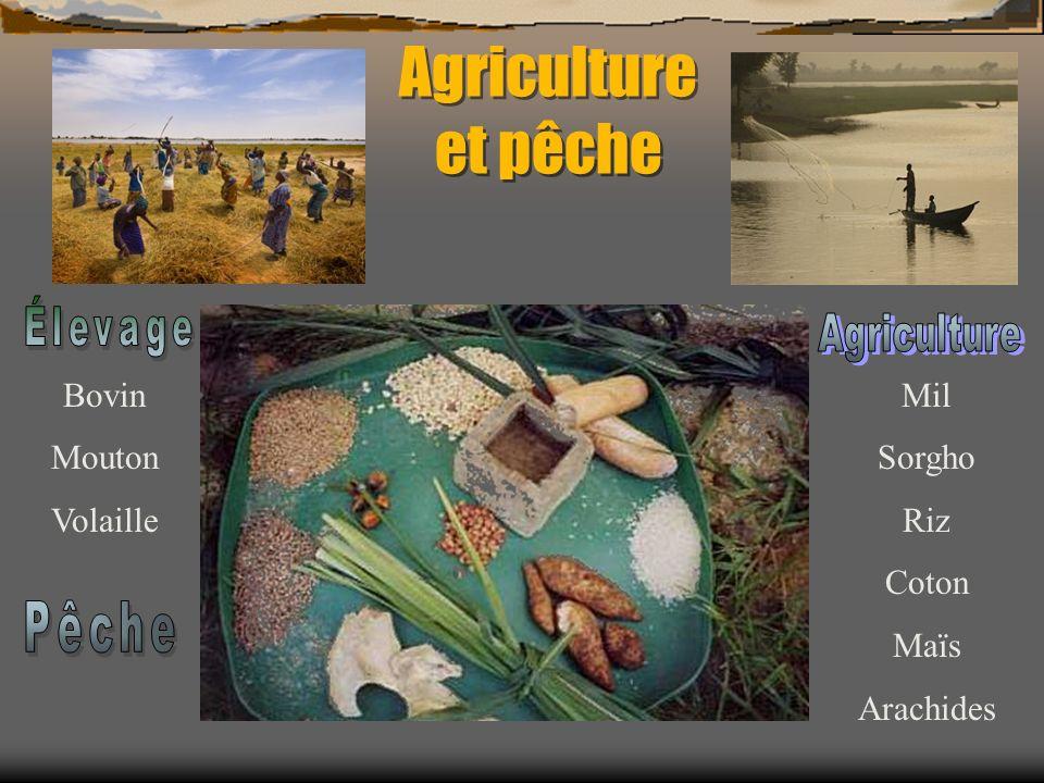 Économie du pays 80 % travaillent dans l agriculture ou la pêche.