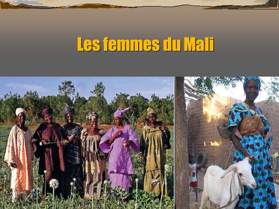 Les principales problématiques La désertification Environ 40 % du territoire du Mali est touché par la désertification.