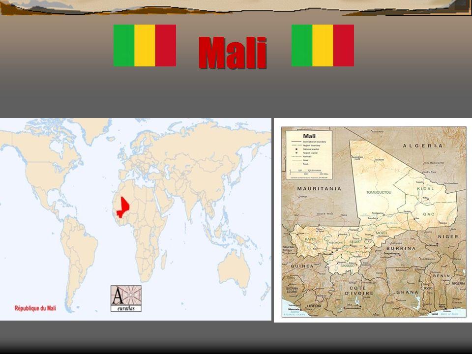Carte didentité du pays Capitale : Bamako Langues : Français (officielle); bambara; peul; tamashek; songhaï… Monnaie : Franc CFA (dAfrique de lOuest) Espérance de vie pour les hommes : 46.2 ans (2002) Espérance de vie pour les femmes : 48.6 ans (2002)