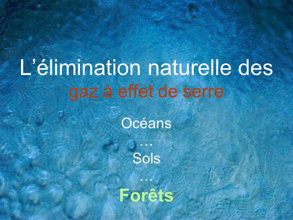 Lélimination naturelle des gaz à effet de serre Océans … Sols … Forêts