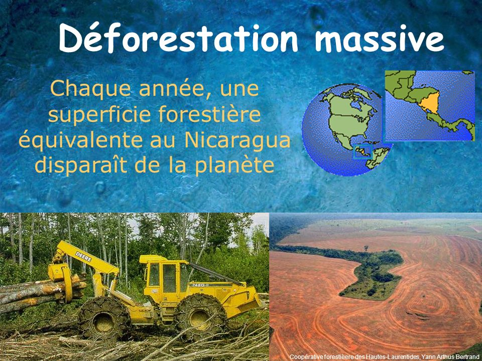 Déforestation massive Chaque année, une superficie forestière équivalente au Nicaragua disparaît de la planète Coopérative forestièere des Hautes-Laur