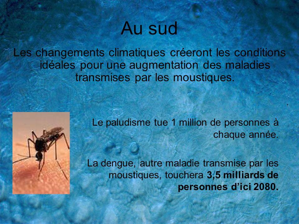 Au sud Les changements climatiques créeront les conditions idéales pour une augmentation des maladies transmises par les moustiques.. Le paludisme tue
