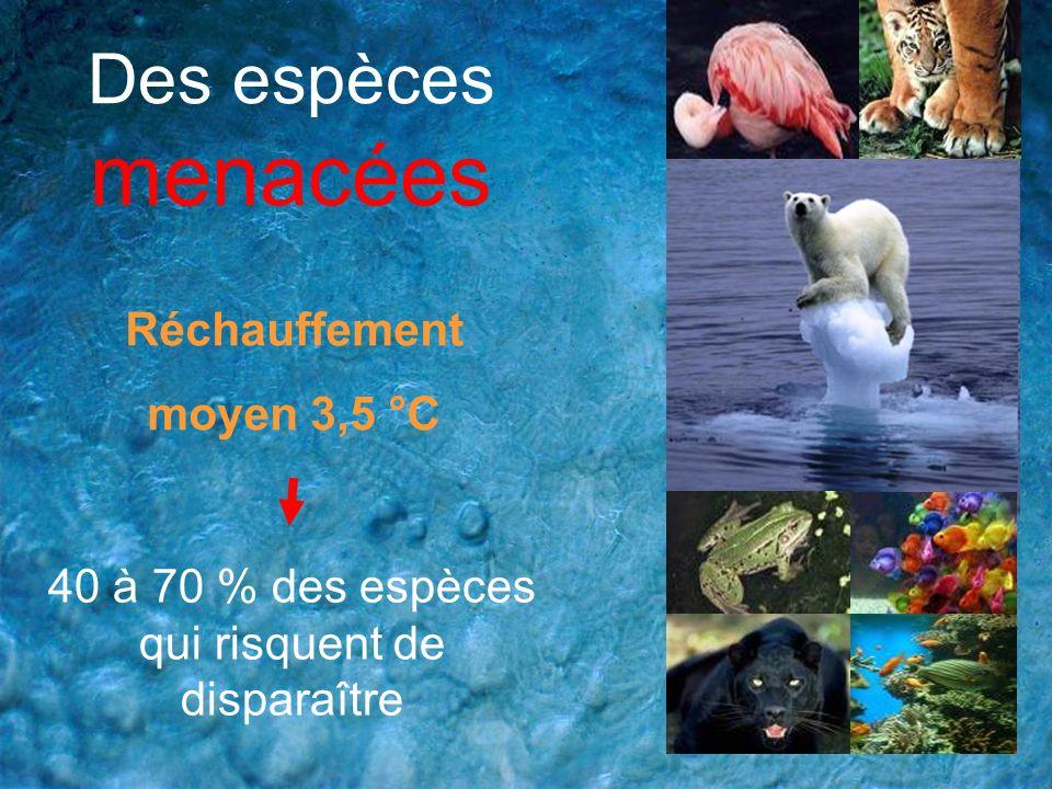 Des espèces menacées Réchauffement moyen 3,5 °C 40 à 70 % des espèces qui risquent de disparaître
