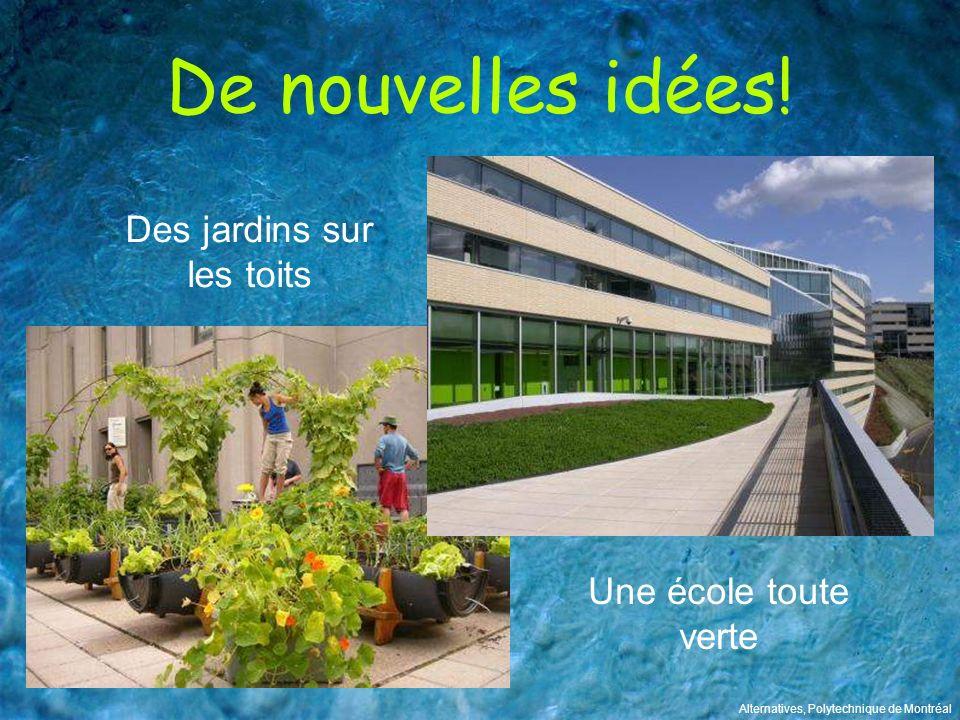 De nouvelles idées! Des jardins sur les toits Alternatives, Polytechnique de Montréal Une école toute verte