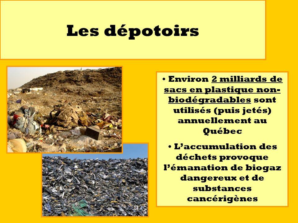 Les dépotoirs Environ 2 milliards de sacs en plastique non- biodégradables sont utilisés (puis jetés) annuellement au Québec Laccumulation des déchets