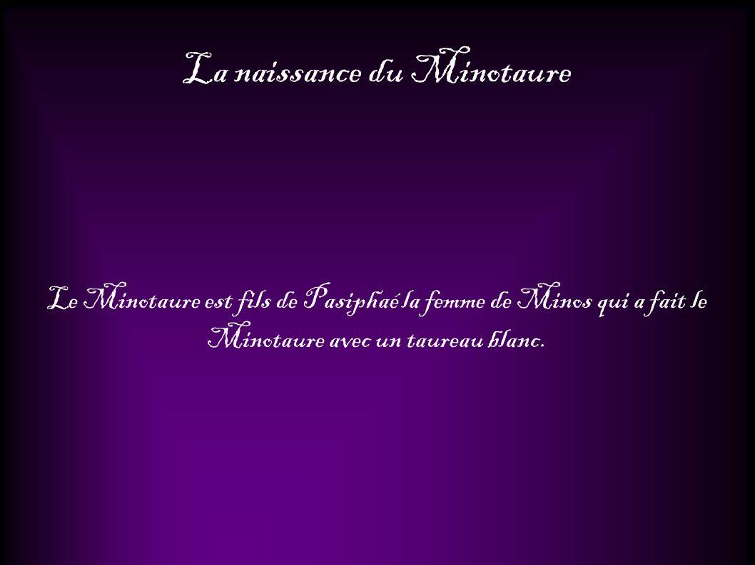 La naissance du Minotaure Le Minotaure est fils de Pasiphaé la femme de Minos qui a fait le Minotaure avec un taureau blanc.
