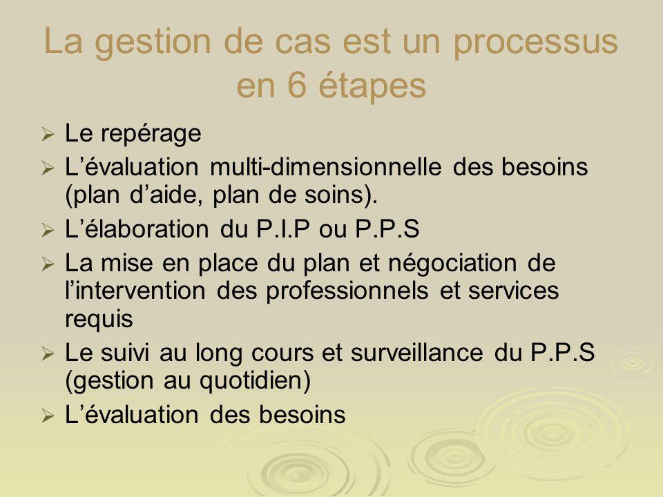 La gestion de cas est un processus en 6 étapes Le repérage Lévaluation multi-dimensionnelle des besoins (plan daide, plan de soins). Lélaboration du P