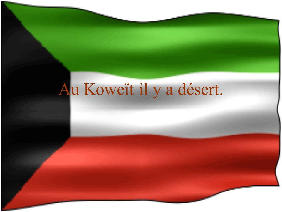 Au Koweït il y a désert.