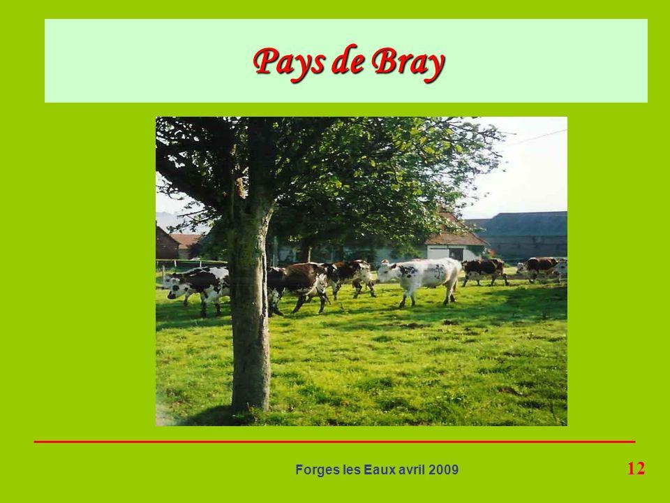 12 Forges les Eaux avril 2009 Pays de Bray