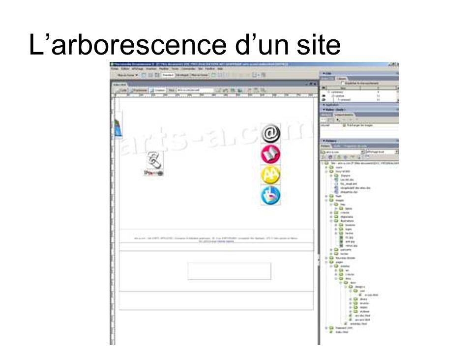 Schéma darborescence Page INDEX ou daccueil images pages vidéos diaporamas sons flash