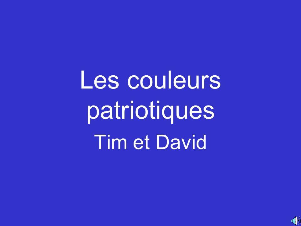 Les couleurs patriotiques Tim et David