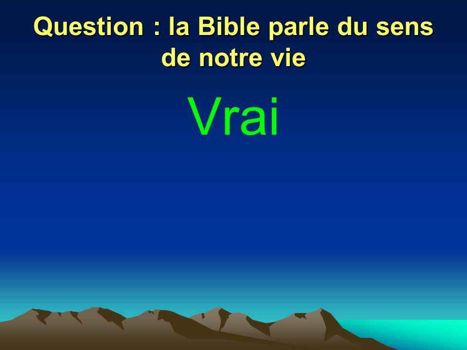 Question : la Bible parle du sens de notre vie Vrai