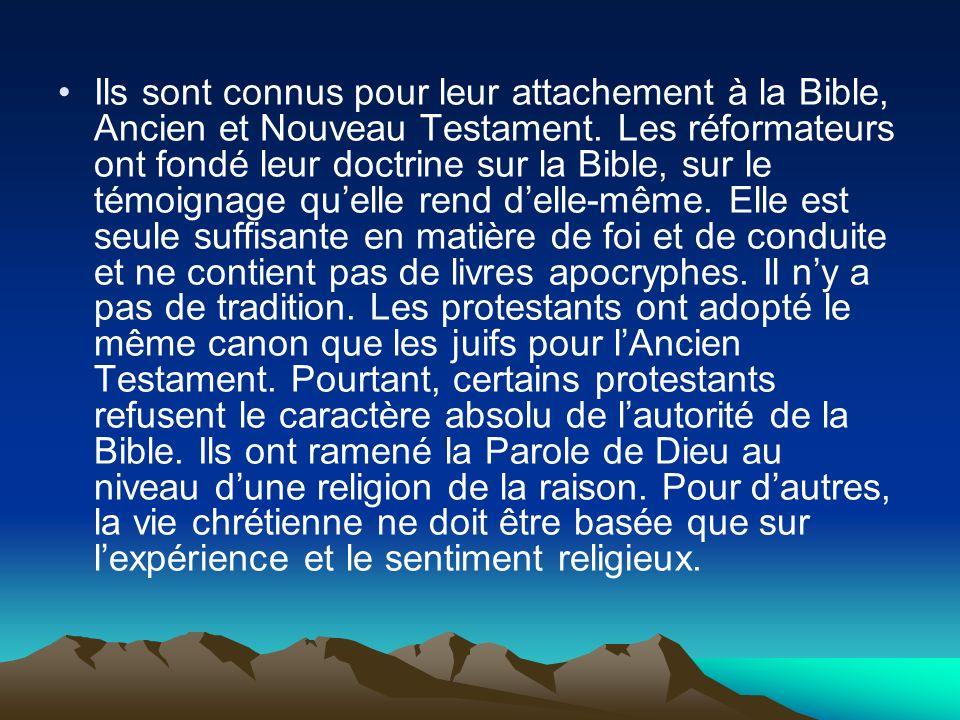Ils sont connus pour leur attachement à la Bible, Ancien et Nouveau Testament. Les réformateurs ont fondé leur doctrine sur la Bible, sur le témoignag