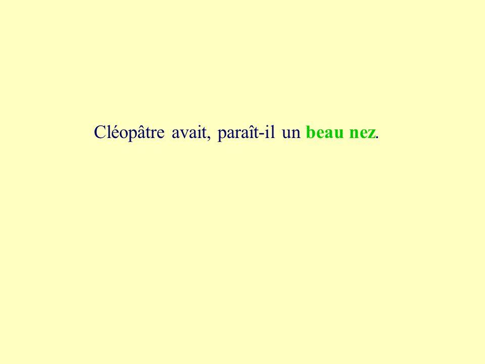 2a beau nez Cléopâtre avait, paraît-il un bonnet beau nez