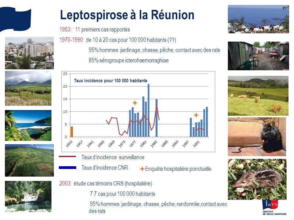 Leptospirose à la Réunion 1953: 11 premiers cas rapportés 1970-1990: de 10 à 20 cas pour 100 000 habitants (??) 95% hommes: jardinage, chasse, pêche,