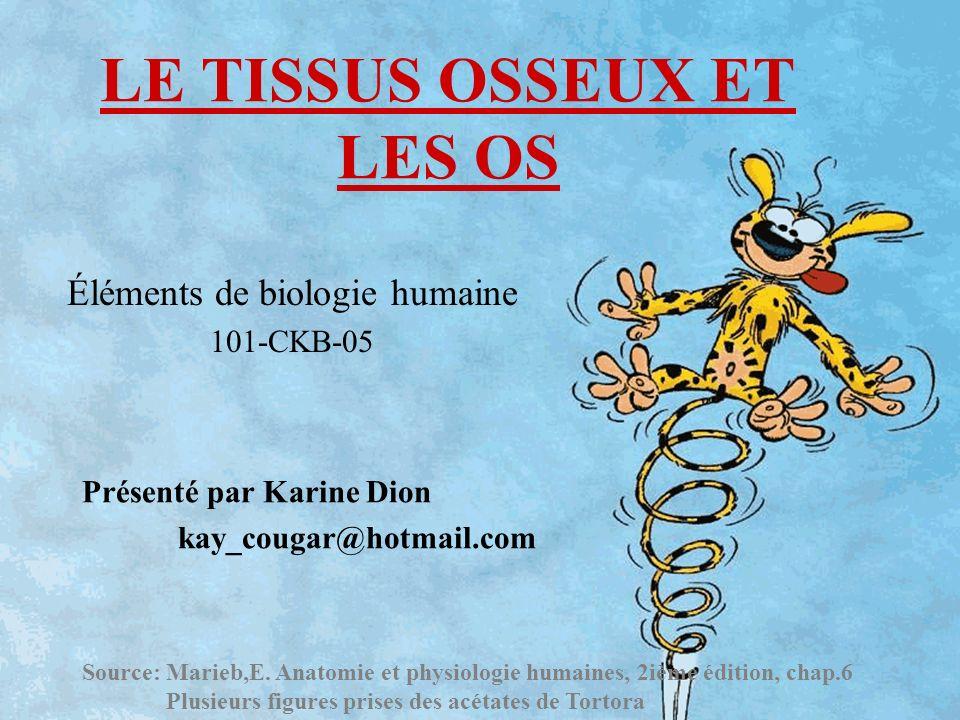 LE TISSUS OSSEUX ET LES OS Éléments de biologie humaine 101-CKB-05 Présenté par Karine Dion kay_cougar@hotmail.com Source: Marieb,E. Anatomie et physi