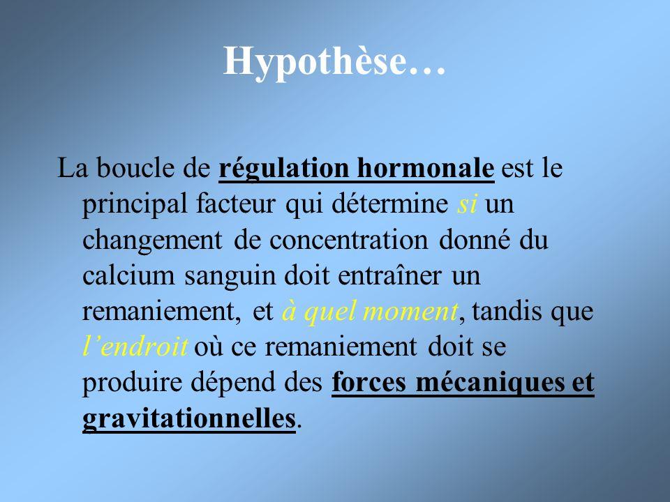 Hypothèse… La boucle de régulation hormonale est le principal facteur qui détermine si un changement de concentration donné du calcium sanguin doit en