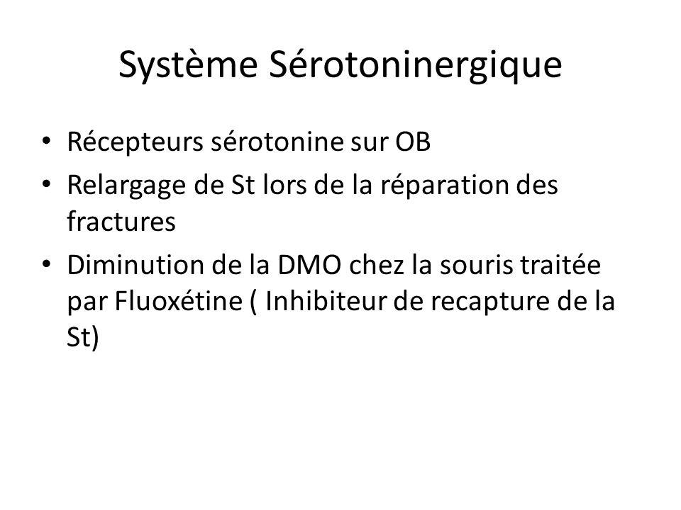 Système Sérotoninergique Récepteurs sérotonine sur OB Relargage de St lors de la réparation des fractures Diminution de la DMO chez la souris traitée