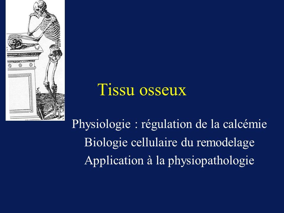 Tissu osseux Physiologie : régulation de la calcémie Biologie cellulaire du remodelage Application à la physiopathologie