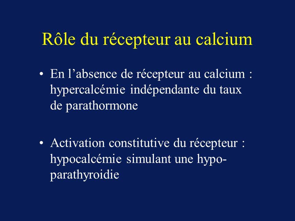 Rôle du récepteur au calcium En labsence de récepteur au calcium : hypercalcémie indépendante du taux de parathormone Activation constitutive du récepteur : hypocalcémie simulant une hypo- parathyroidie
