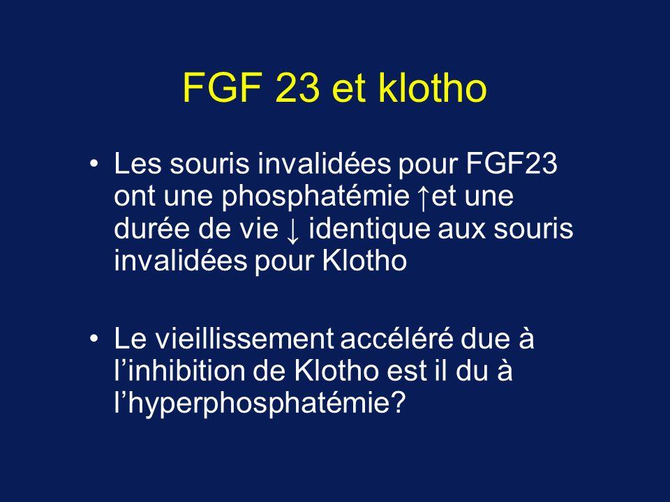 FGF 23 et klotho Les souris invalidées pour FGF23 ont une phosphatémie et une durée de vie identique aux souris invalidées pour Klotho Le vieillissement accéléré due à linhibition de Klotho est il du à lhyperphosphatémie?
