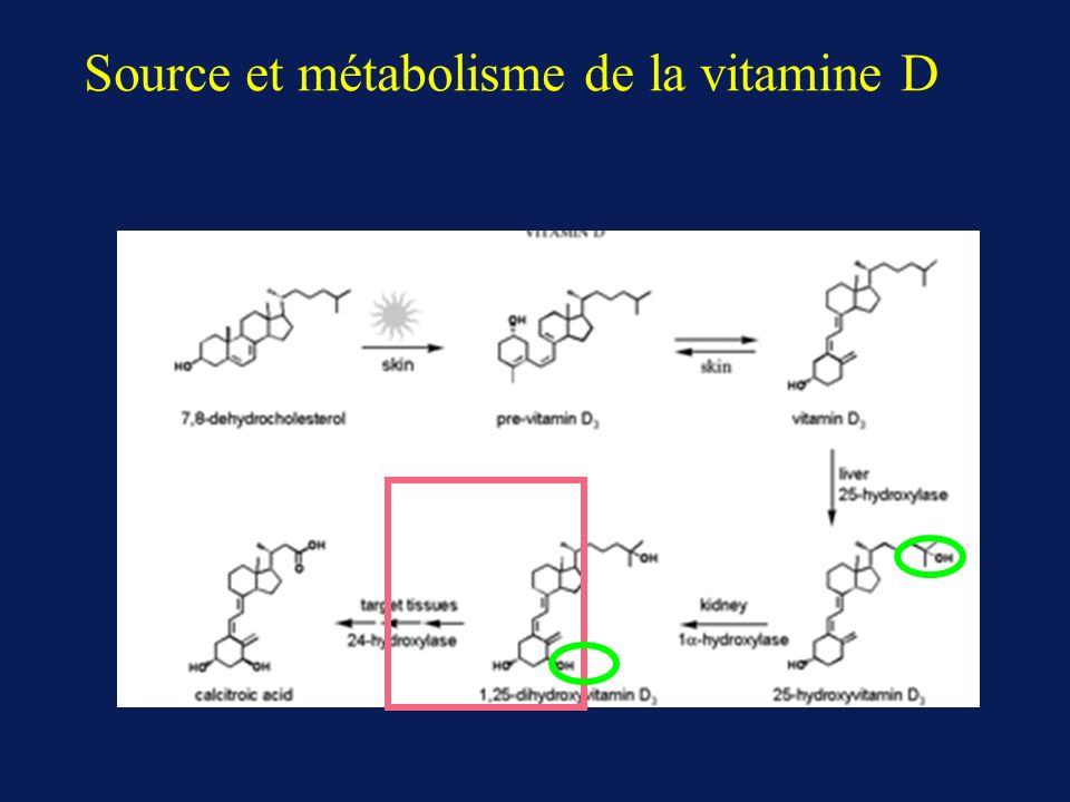 Vitamine D: multiples actions potentielles