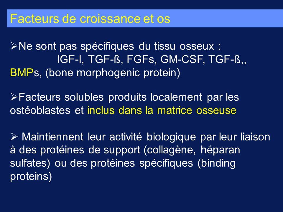 Facteurs de croissance et os Ne sont pas spécifiques du tissu osseux : IGF-I, TGF-ß, FGFs, GM-CSF, TGF-ß,, BMPs, (bone morphogenic protein) Facteurs solubles produits localement par les ostéoblastes et inclus dans la matrice osseuse Maintiennent leur activité biologique par leur liaison à des protéines de support (collagène, héparan sulfates) ou des protéines spécifiques (binding proteins)