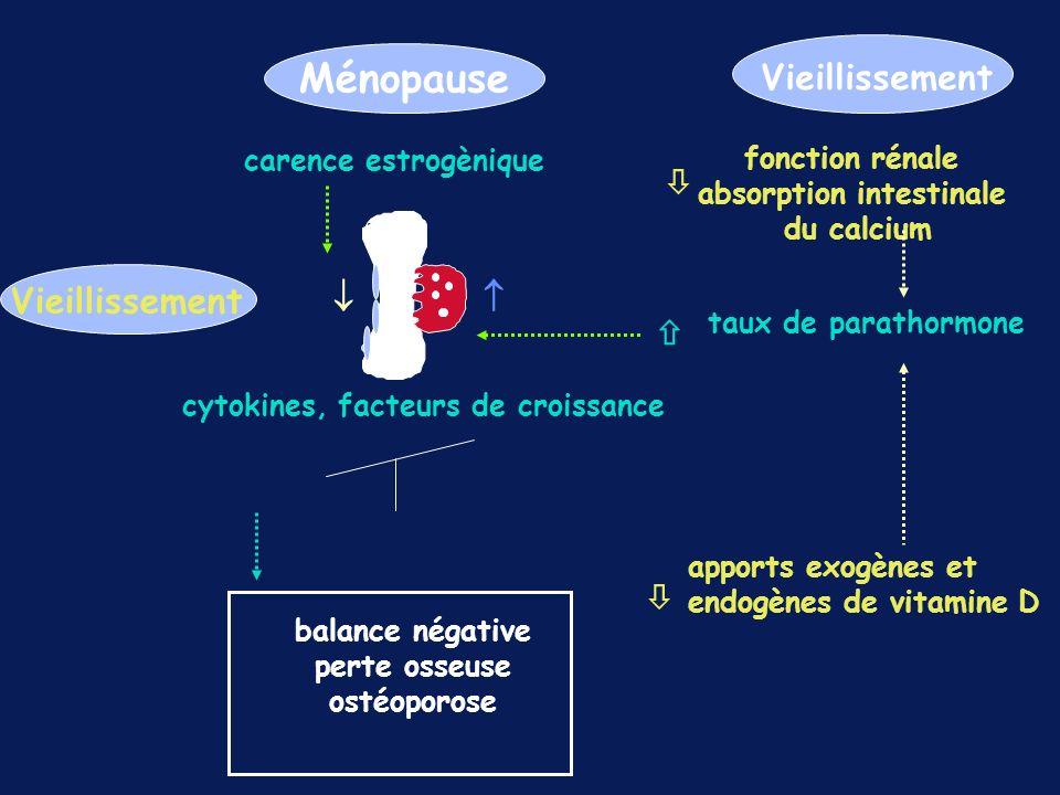 Ménopause carence estrogènique balance négative perte osseuse ostéoporose cytokines, facteurs de croissance apports exogènes et endogènes de vitamine D Vieillissement fonction rénale absorption intestinale du calcium taux de parathormone Vieillissement