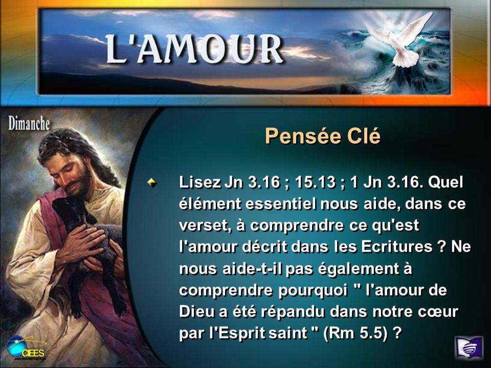 Lisez Jn 3.16 ; 15.13 ; 1 Jn 3.16. Quel élément essentiel nous aide, dans ce verset, à comprendre ce qu'est l'amour décrit dans les Ecritures ? Ne nou