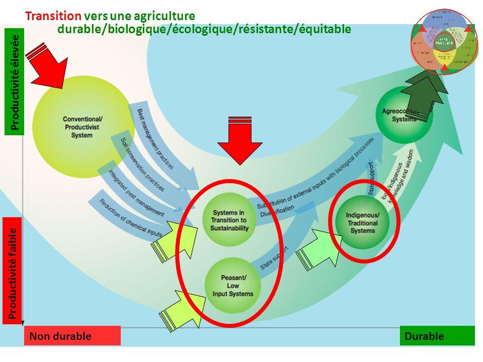 Transition vers une agriculture durable/biologique/écologique/résistante/équitable DurableNon durable Productivité faible Productivité élevée