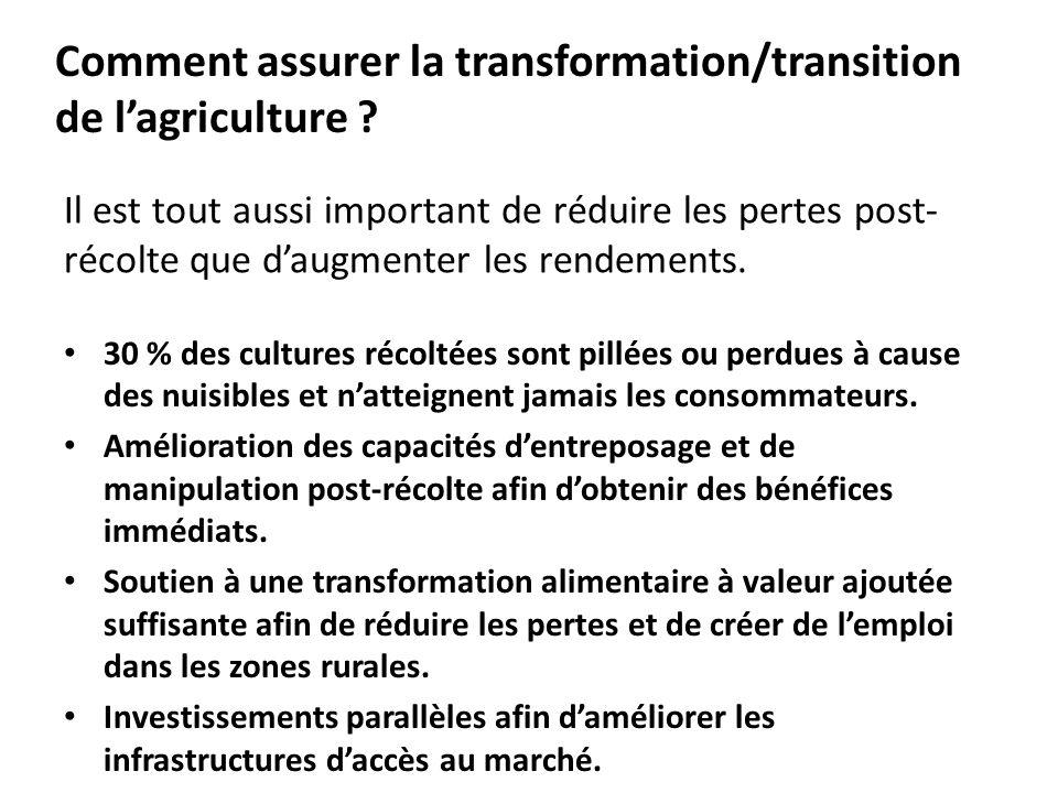 Il est tout aussi important de réduire les pertes post- récolte que daugmenter les rendements.