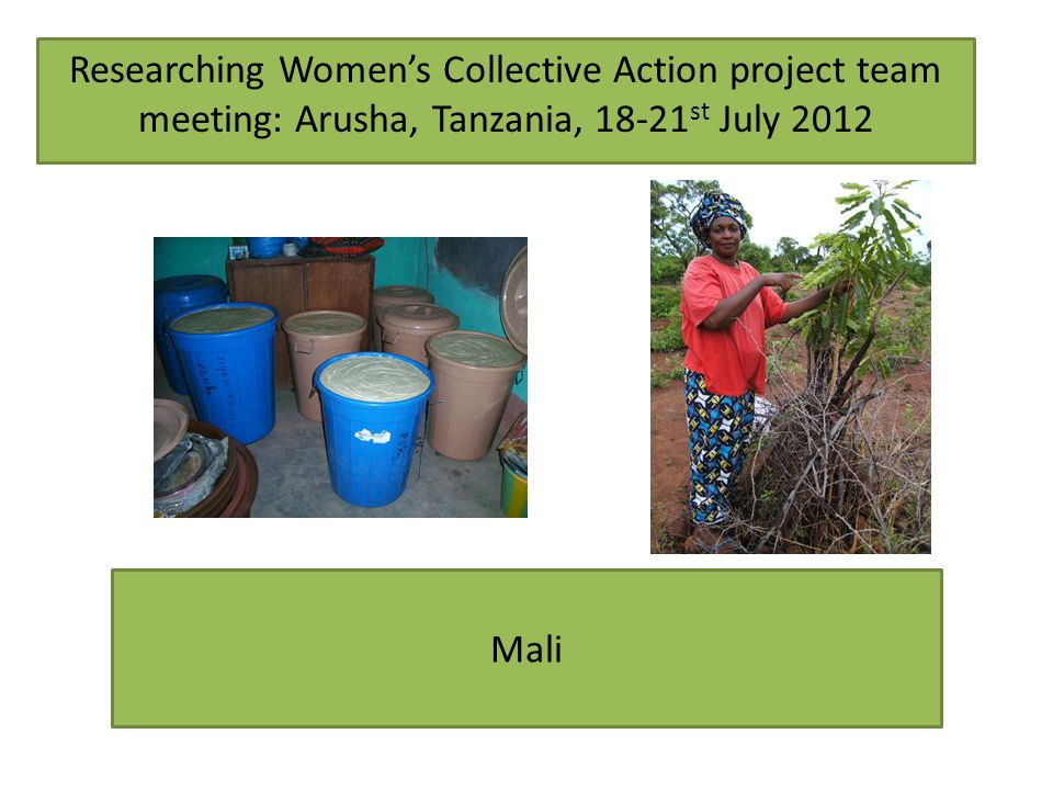Mali Researching Womens Collective Action project team meeting: Arusha, Tanzania, st July 2012