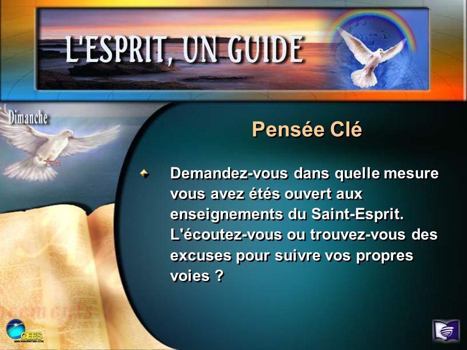 Demandez-vous dans quelle mesure vous avez étés ouvert aux enseignements du Saint-Esprit. L'écoutez-vous ou trouvez-vous des excuses pour suivre vos p