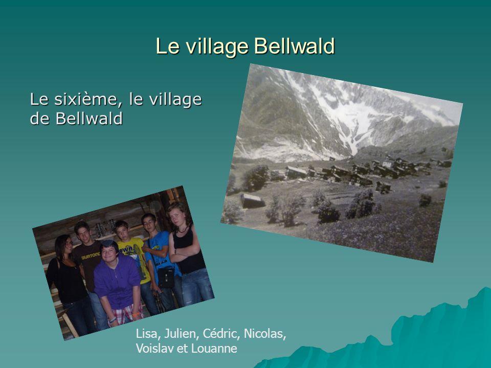 Le village Bellwald Le sixième, le village de Bellwald Lisa, Julien, Cédric, Nicolas, Voislav et Louanne