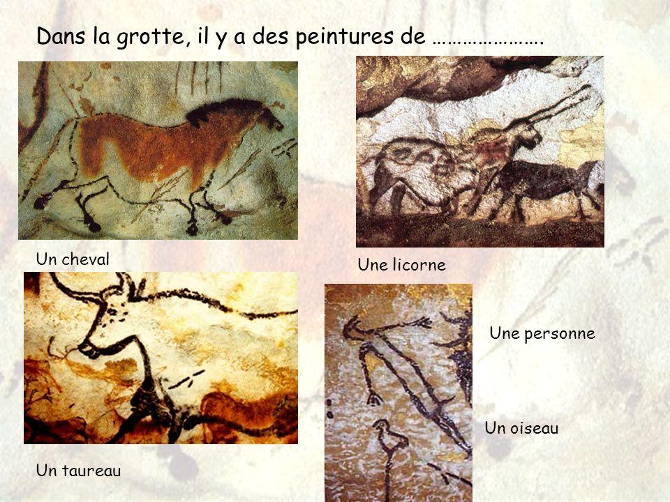 Dans la grotte, il y a des peintures de ………………….