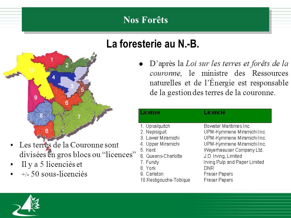 Nos Forêts La foresterie au N.-B.