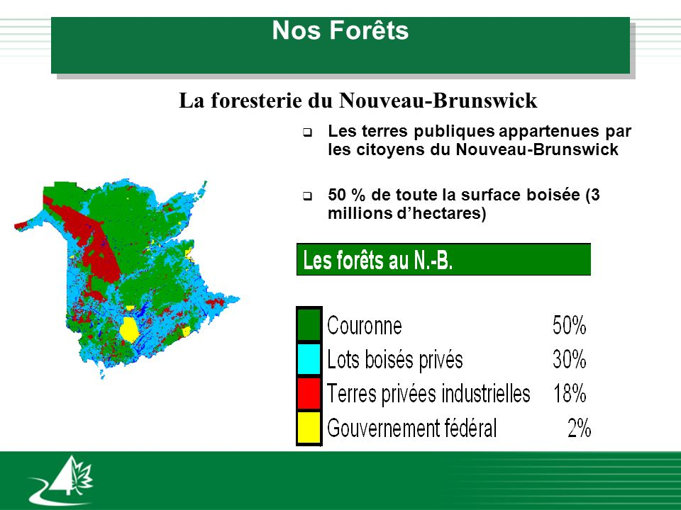 Nos Forêts La foresterie du Nouveau-Brunswick q Les terres publiques appartenues par les citoyens du Nouveau-Brunswick q 50 % de toute la surface bois