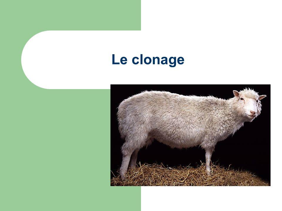 Le clonage… Un processus ou un organisme est formé par un seul parent.