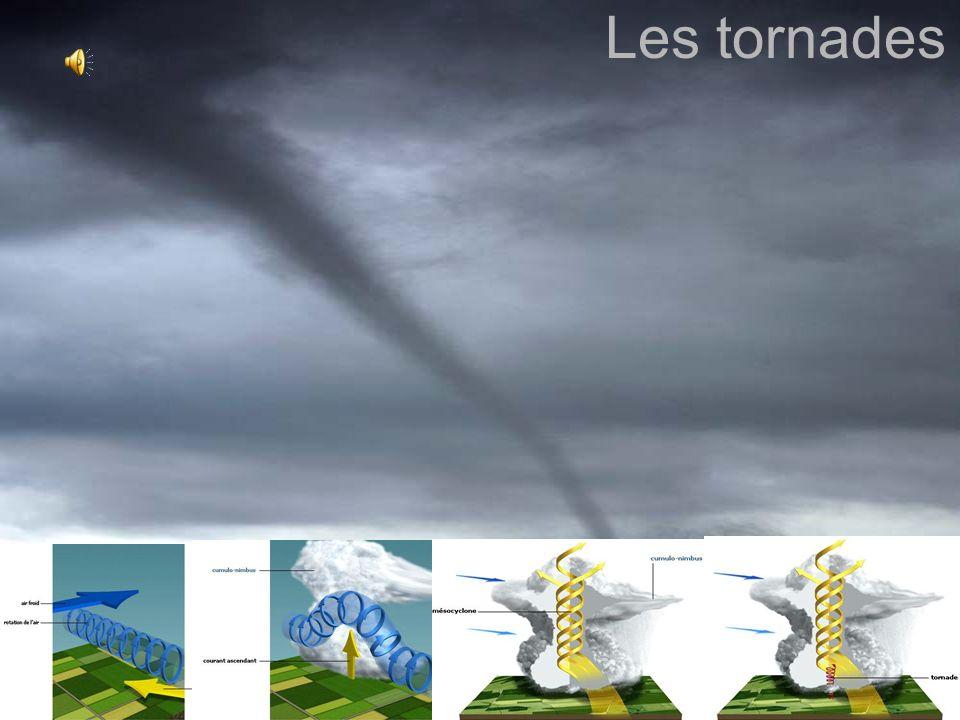 Quiz 1.Combien détapes est-ce quil y a dans la formation d un orage.