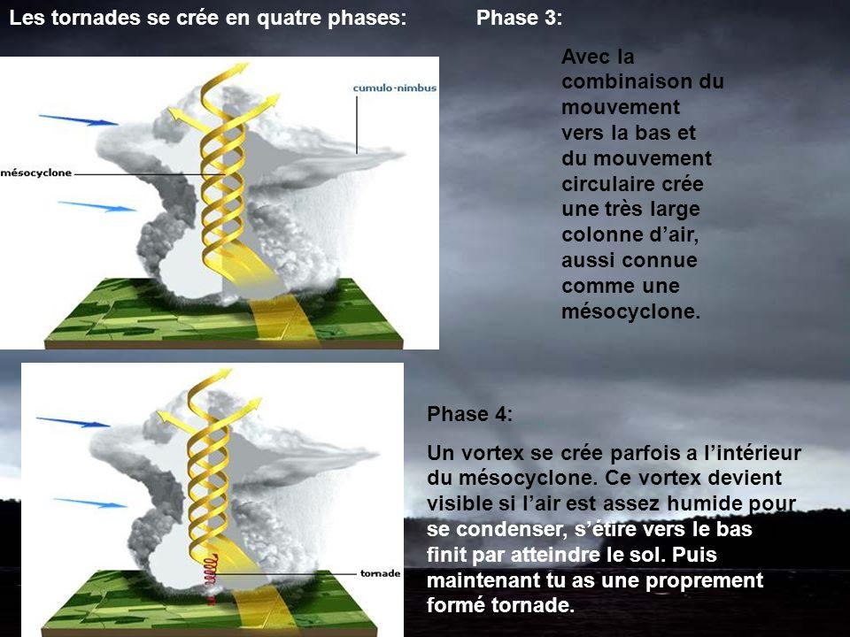 Les tornades se crée en quatre phases: Phase 3: Avec la combinaison du mouvement vers la bas et du mouvement circulaire crée une très large colonne dair, aussi connue comme une mésocyclone.