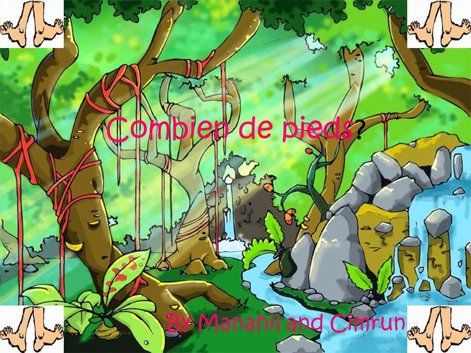 Combien de pieds By Manahil and Cimrun