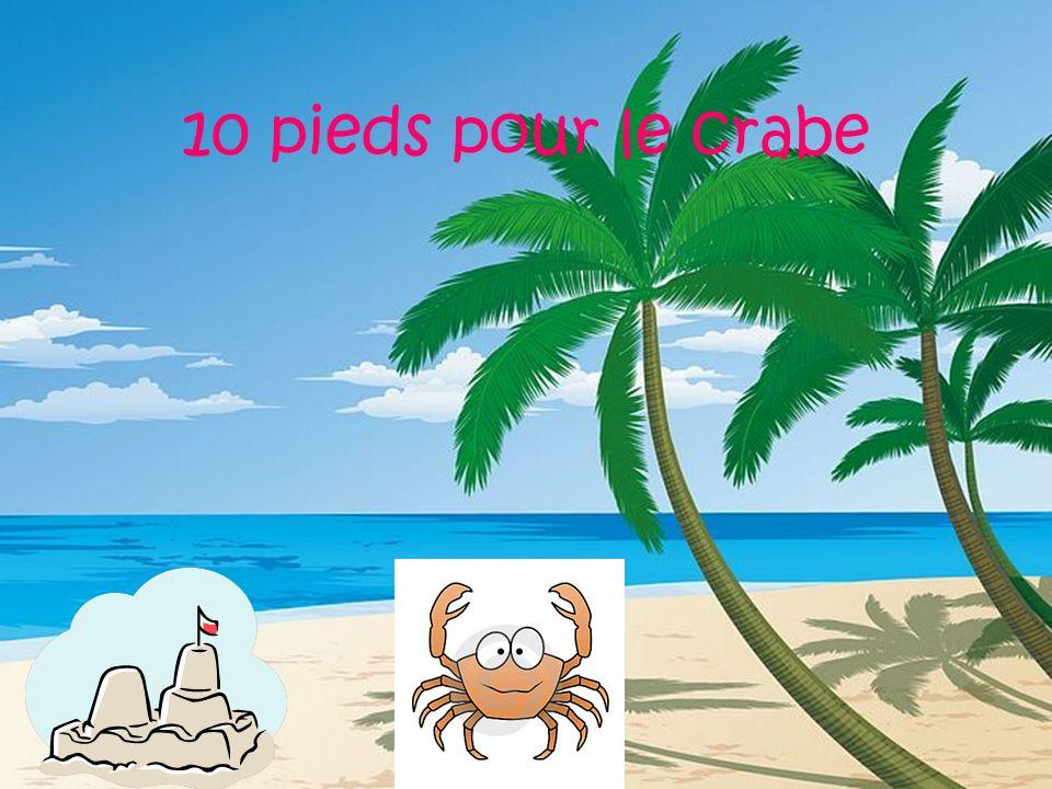 10 pieds pour le crabe