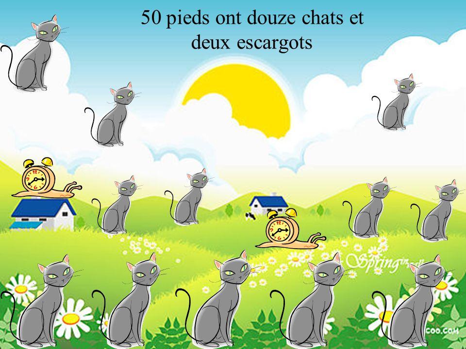 50 pieds ont douze chats et deux escargots
